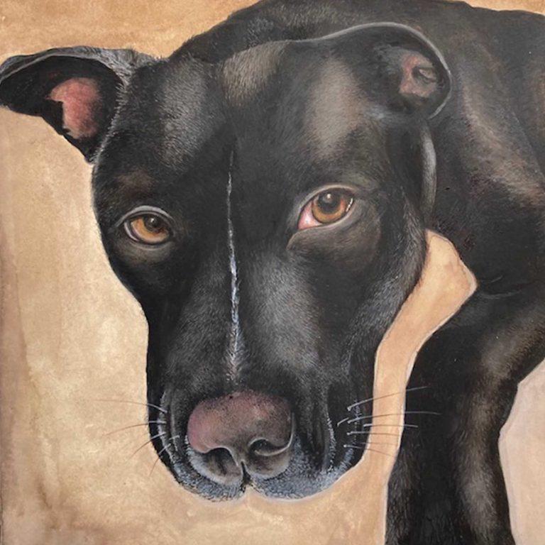 animal portrait (1) copy